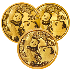 Gold Pandas