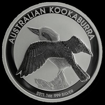 Australian Kookaburra Front