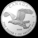Canadian 1oz Silver Eagle Coin  2014 999.9